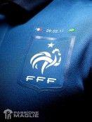 Il nuovo stemma FFF