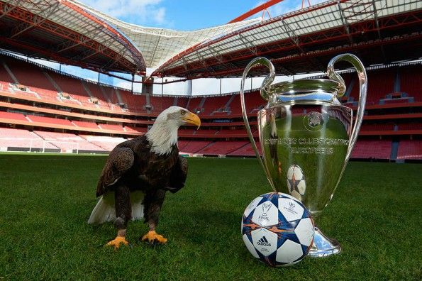Pallone fase finale Champions League 2013-14