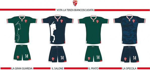 Sondaggio terza maglia Padova 2014-15