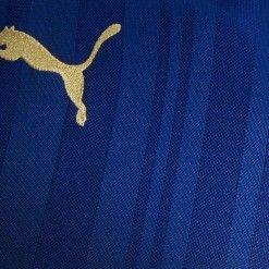 Trama a righe maglia Leicester 16-17