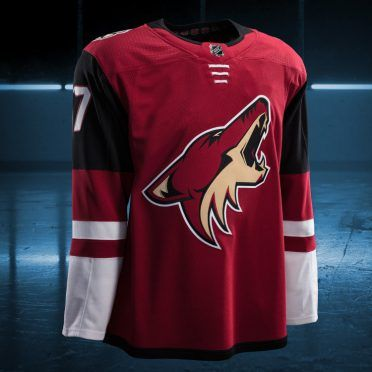 Arizona Coyotes 2017/2018