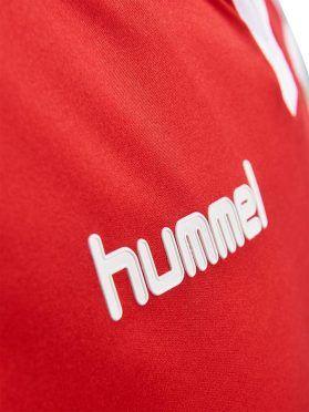 Danimarca Home Speciale 1992-2017, Logo Hummel