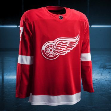 Detroit Red Wings 2017/2018