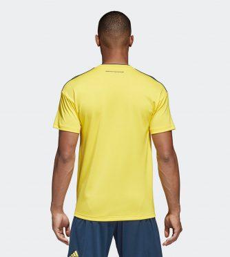 Retro prima maglia Colombia 2018-2020