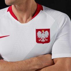Dettaglio stemma aquila Polonia