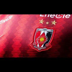 Dettaglio stemma Urawa Red Diamonds