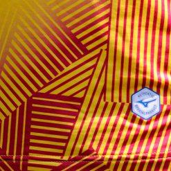 Grafica a righe sulla maglia away del Cittadella