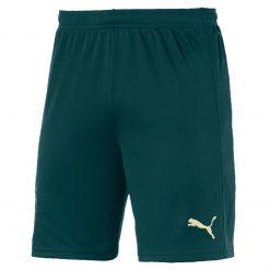 Pantaloncini Italia verdi Puma