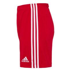 Pantaloncini Bayern Monaco rossi 2020-21 lato