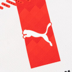 PSV logo Puma