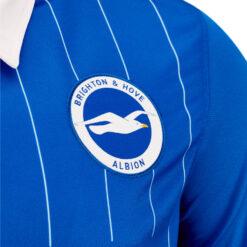 Stemma Brighton & Hove Albion 2020-21