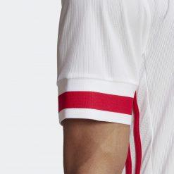 Ajax dettaglio manica