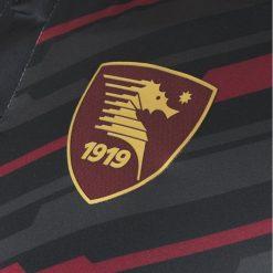 logo-terza-maglia-salernitana-2020