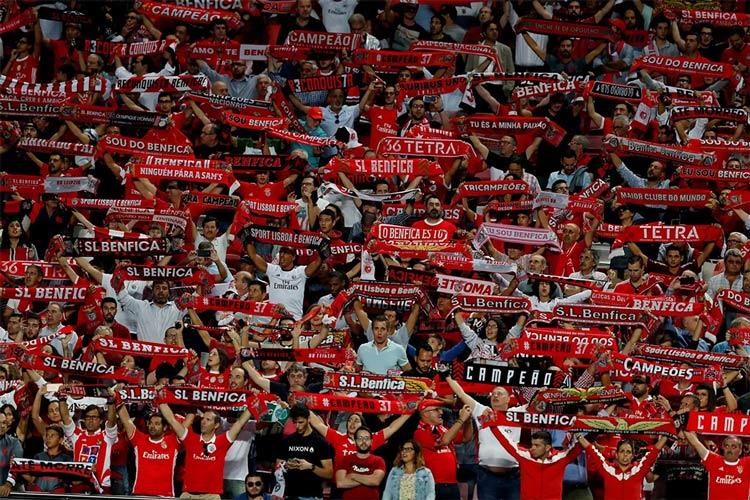 Tifosi Benfica sciarpata
