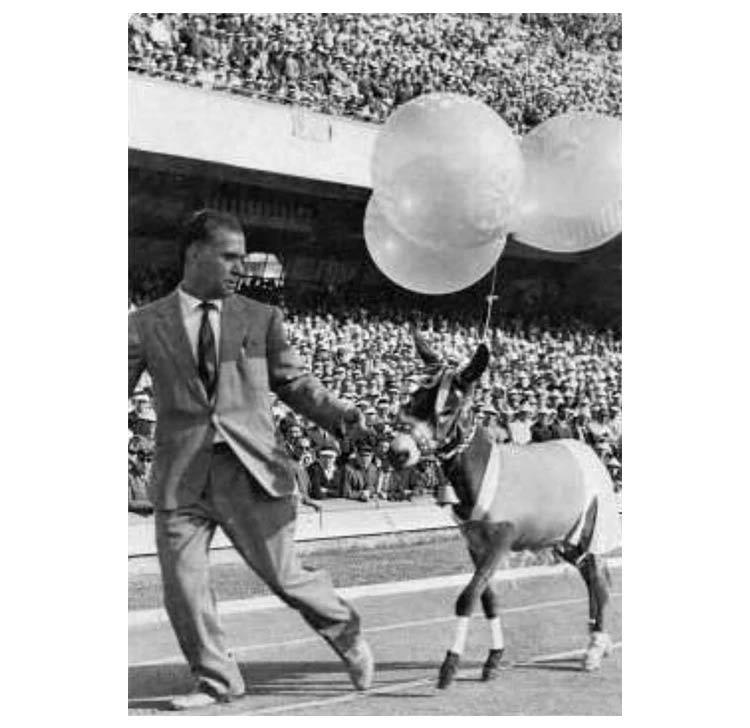 Il ciuccio allo stadio San Paolo negli anni '60