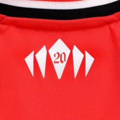 Particolare 20 retro collo maglia Southampton