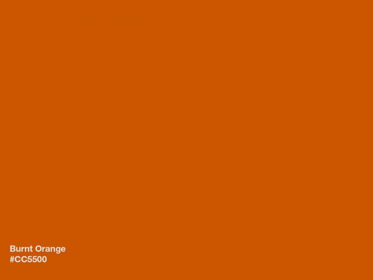 Colore burnt orange